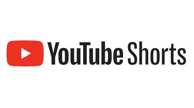 Youtube shorts should arrive really soon.